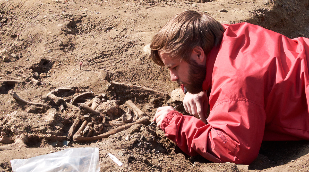 archeologist using a small brush to reveal fossilised bones