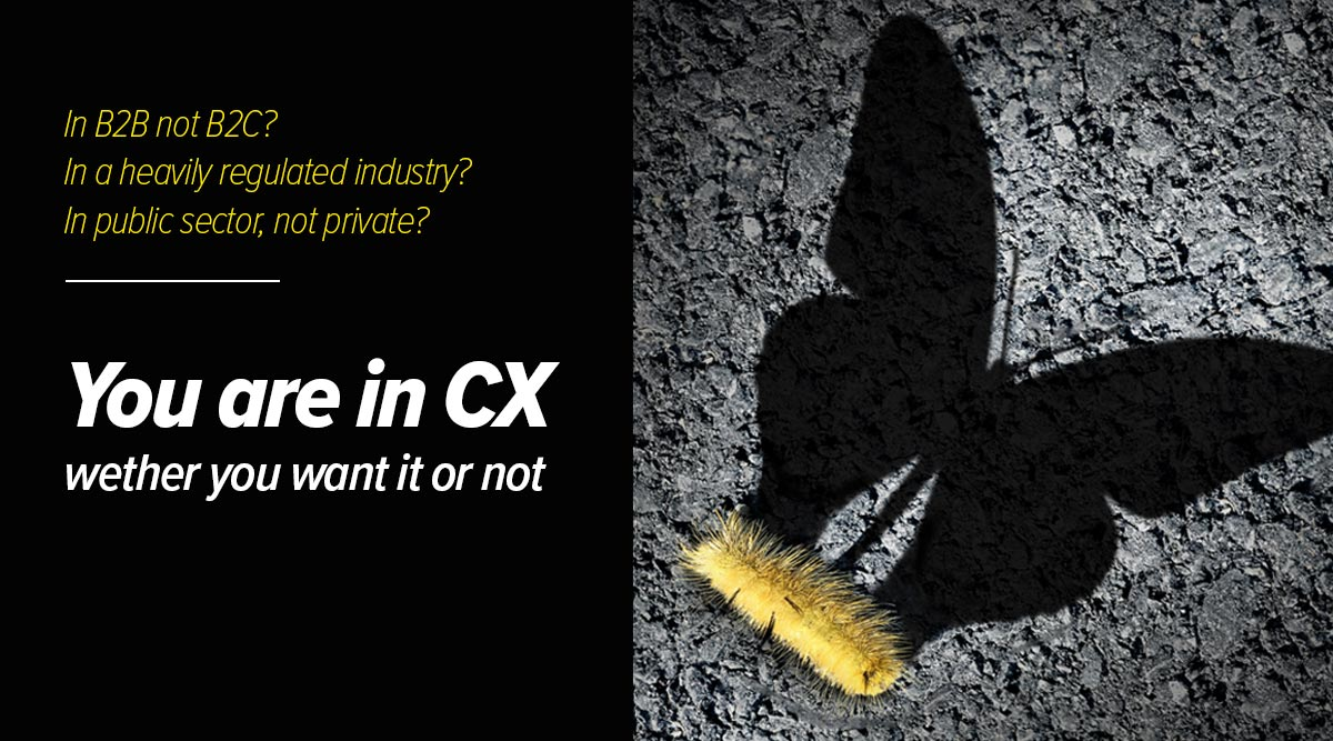 CX culture is not an option: in this illustration, a caterpillar's shadow is in a shape of a butterfly, symbolic to the fact that even companies who think they are not in CX actually already are