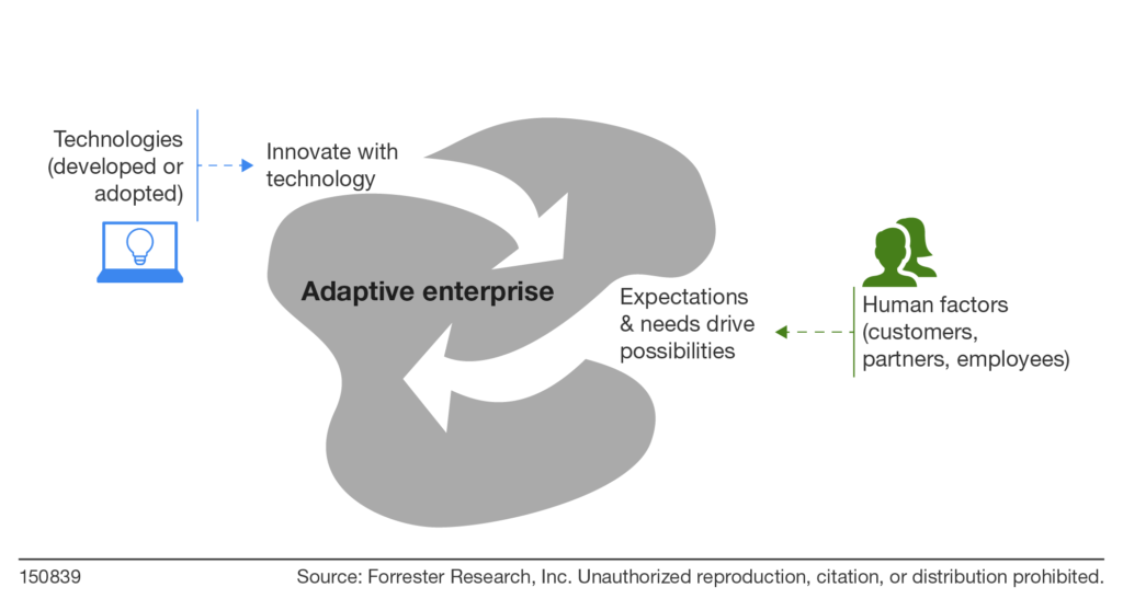 Adaptive enterprises shape-shift in response to human and technology interactions.