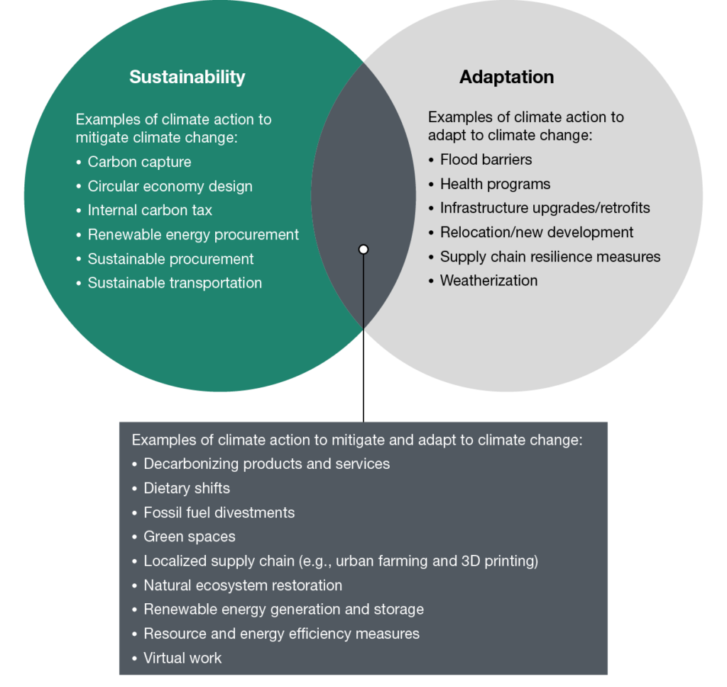 Comparing sustainability and adaptation actions