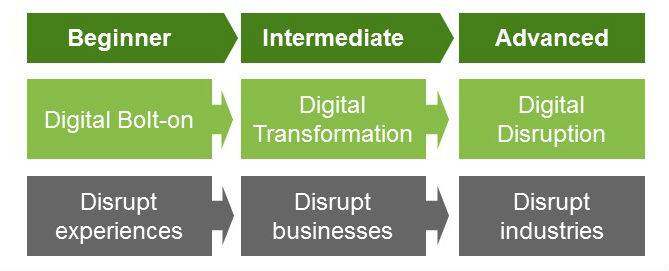 Three levels of digital maturity