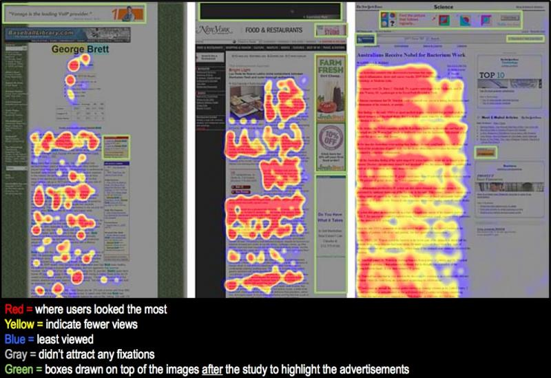 Banner blindness visualization